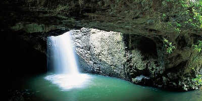 1 Day Natural Arch & Springbrook Tour $98